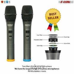 Microphone Sans Fil Dual Handheld 2 X MIC Cordless Receveur 5core Wm67s